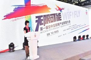 2017 Aviation Expo China